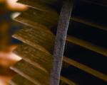 Medinės žaliuzės | ISVETA